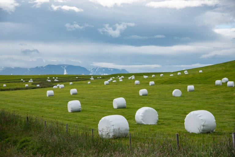 Silage,On,A,Meadow,In,Iceland